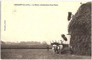 Un atlas régional de l'agriculture et des paysages agricoles du Grand Paris
